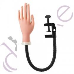 Mão Treino Manicure com Suporte - Pollié